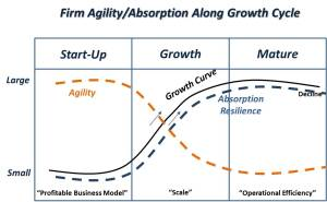 Firm Agility Absorption