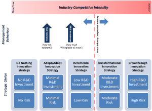 Innovation Strategy Risk Tolerance